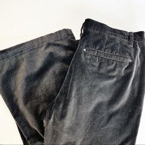 White House Black Market velour velvet flare pants